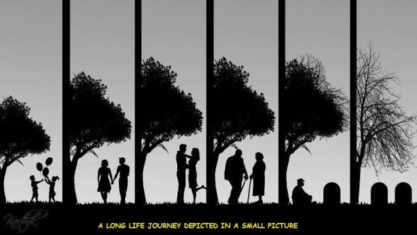 Image result for in the life journey