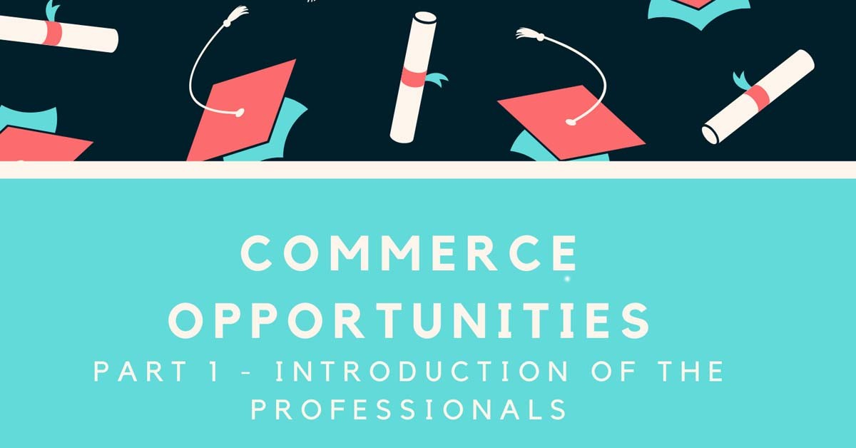 Commerce opportunities: Part 1 - Introduction of the Professionals